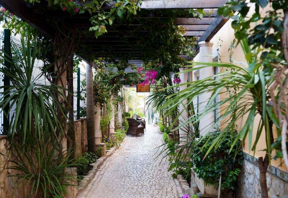 Dom Manuel I - Charming Residence
